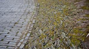 Bridges Park Stone Grass