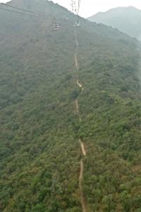 Dongel Lines 2